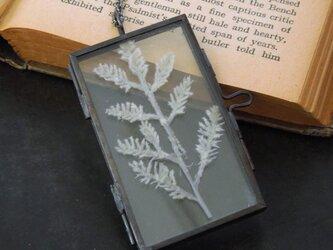 植物標本ペンダント//アンティークアイアンフレーム(ボタニカル//アルテミシア)の画像