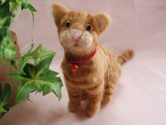 羊毛猫*茶トラ*お座りの画像