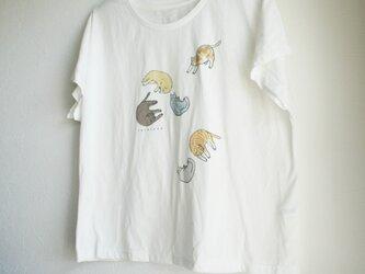 ごろ寝ねこ ドルマンTシャツの画像
