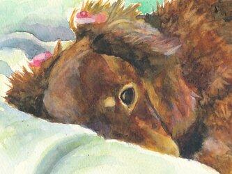 ペットの肖像画 水彩画の画像