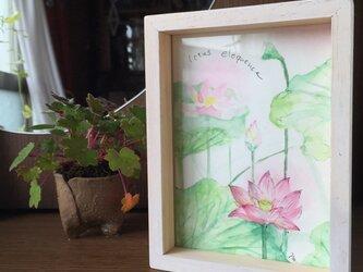 【monokli】蓮池〜季節の花のアートフレーム〜の画像