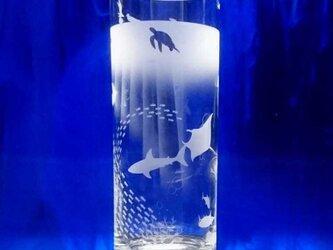 【お魚いっぱい!マリン・アクアリウム】ロングタンブラーの画像