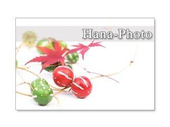 1173)  秋の実や葉       ポストカード5枚組の画像