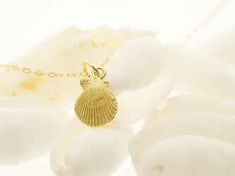 K18 貝殻のチャーム - Kaiawaseの画像