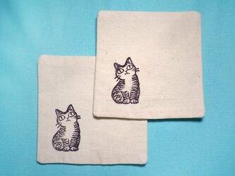 コースター2枚セット(上目遣いの猫)の画像