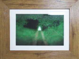CG版画「森の中」の画像