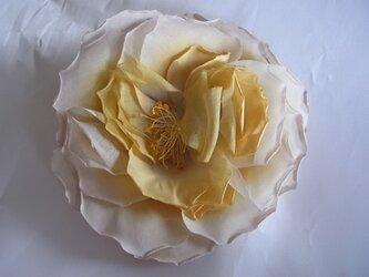 木綿の大輪バラコサージュ(クリーム色)の画像