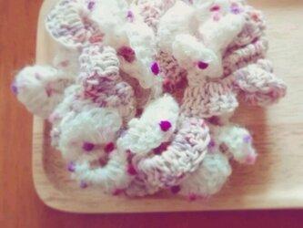 シュシュ * White roseの画像