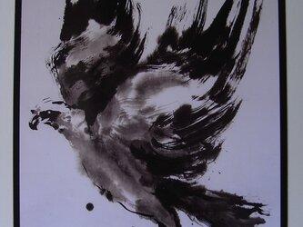 飛び立つ鷹の画像