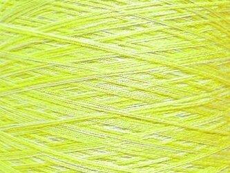 シルク糸 ホワイト・イエローグリーン系 114 gの画像