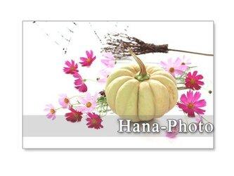 1180) ハロウィン 2           ポストカード5枚組の画像