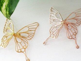 butterfly ピアス  B-L1-P/ Gの画像