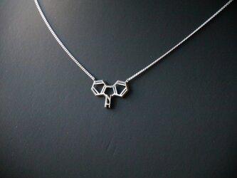 化学式®アクセサリー ネックレスの画像