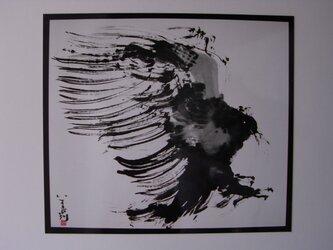 狙う鷹の画像