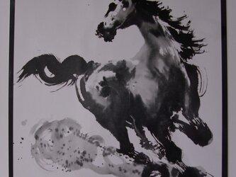 駿馬の画像