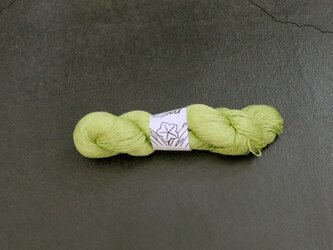 Linea(リネア)lime-greenの画像