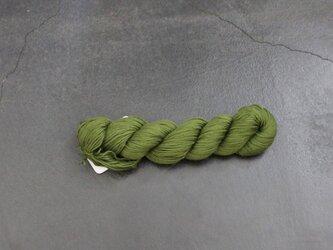 Skinny cotton(スキニーコットン) basilの画像