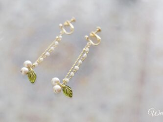 Lily of the Valleyの画像