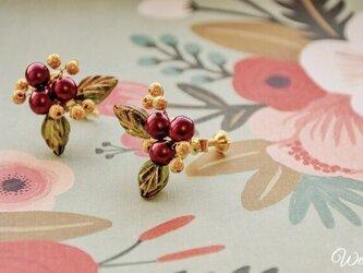 華やか*.゜柊のイヤリングの画像