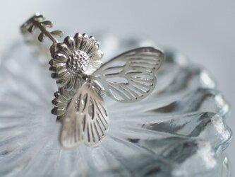 パラディリング Silverの画像