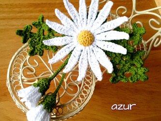 マーガレットの花とつぼみフリンジのコサージュの画像