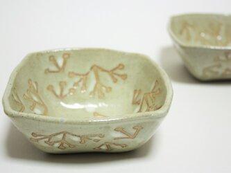 ミツマタ小鉢の画像