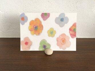 ポストカード ―小さい花々の画像