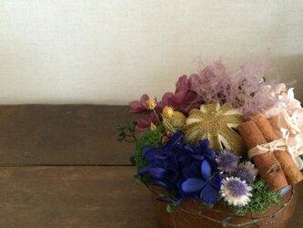 紫陽花potの画像