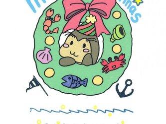アザラシ&猫 クリスマスポストカード の画像