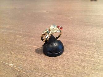 オタマジャクシのリングの画像