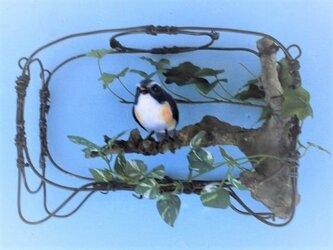 幸せを呼ぶ《あいの鳥》の画像