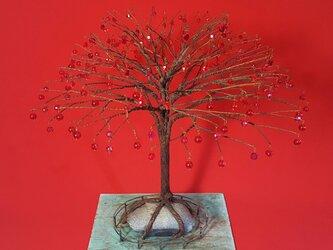 idola『ドロップの木』レッドの画像