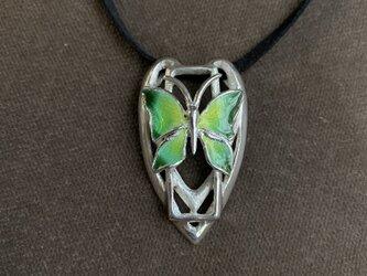 蝶 -butterfly-  チョーカーの画像