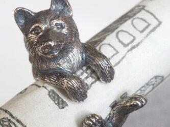 犬リング 柴犬の画像