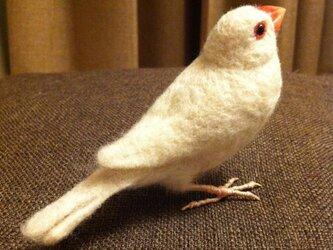 asae* 文鳥グッズ30(羊毛フェルト)の画像