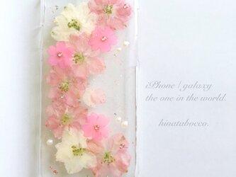 peach*ピンク【iPhone6/6s】の画像