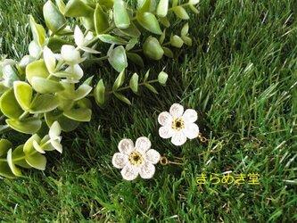レース糸で編んだ ナチュラルお花のピアス(ホワイト)の画像
