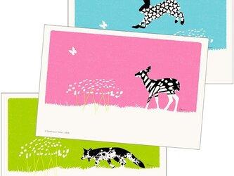 ポストカード こころ森-Bセット(3枚入)の画像