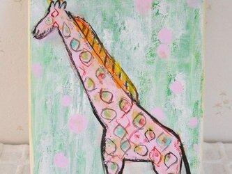 Prairie of giraffeの画像
