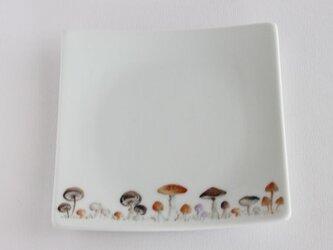 きのこの皿の画像