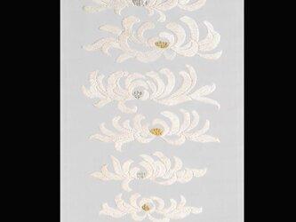 聴秋(菊)の画像