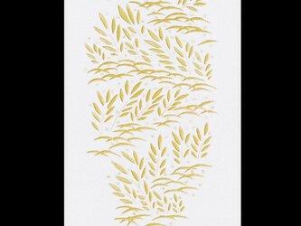 草の露の画像