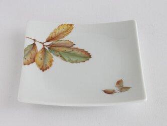 コナラの皿の画像