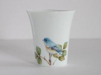 鳥のカップ~ルリビタキの画像