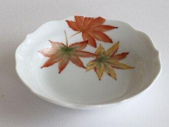 秋のプチプレート~紅葉の画像