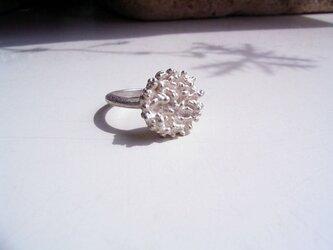 粔籹(おこし)Ring-丸 silver925の画像