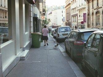 【額付写真】犬も歩けば、2。の画像