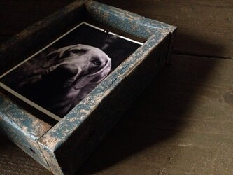 Reversible Frame -blue medi-の画像