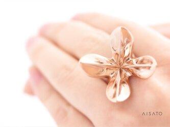 Helix Ring pinkgold へリックスリング ピンクゴールドの画像