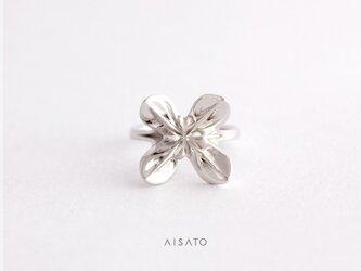 Helix Ring mini Silver へリックスリング ミニ シルバーの画像